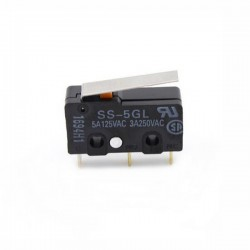 SS-5GL Micro Limit Switch