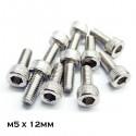 Stainless Steel M5 Hexagonal Socket Screw - 10 pcs